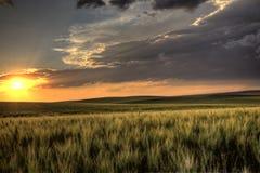 Storm Clouds Saskatchewan Stock Photography