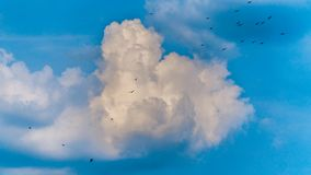 Storm clouds. In the sky at summer time royalty free stock photography
