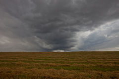 Storm clouds. Weather. The Gathering Storm. Storm clouds over the field Royalty Free Stock Images