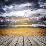 Storm clouds and yellow field Stock Photos