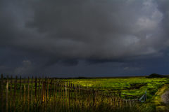 Storm coming. Storm clouds gather over coastal salt marsh in Lincolnshire with picket fence in foreground Royalty Free Stock Images