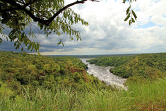 Storm Coming in over Murchsion Falls Park. A dark cloudy storm comes in over the lushness of Murchison Falls National Park Royalty Free Stock Photography