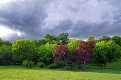 The storm is coming! Spring landscape with dramatic sky. Threatening storm clouds over the green park Stock Photo