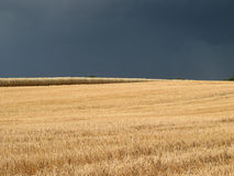 Storm coming up!. Field contrasting with upcoming storm Stock Image