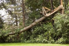 Storm Damage Stock Photos