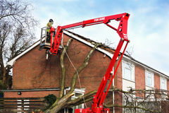 Storm damage. Tree surgeon working up cherry picker repairing storm damaged roof after an uprooted tree fell on top of a residential house Royalty Free Stock Images