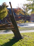 Storm damage: broken trees - v Stock Photography