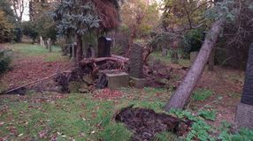 Storm damage on cemetry Royalty Free Stock Images