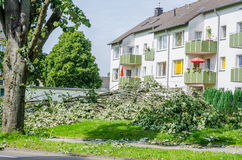 Storm damage due to severe weather. Storm damage, uprooted trees caused by a major storm Stock Images