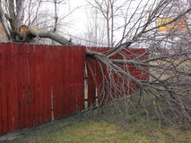 Storm Damage. After fall of a bad summer storm damaging a fence Stock Image