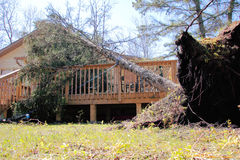 Storm Damage. A fallen tree has caused damage to a residence after a severe wind storm Royalty Free Stock Photography
