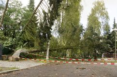 Storm damage after hurricane Xavier in Germany. Storm damage with fallen trees blocking road after hurricane Xavier in Berlin, Germany royalty free stock images