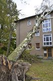 Storm damage after hurricane Herwart in Berlin, Germany. Storm damage with fallen birch and damaged house after hurricane Herwart in Berlin, Germany stock images