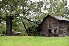 Storm Damage Due to Hurricane Florence in NC. Large tree branch has fallen and damaged this barn during Hurricane Florence royalty free stock photo
