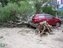 Storm damage Royalty Free Stock Photo