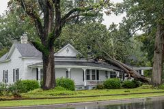 Storm damage in Wilson, NC from Hurricane Florence. WILSON, NC - SEPTEMBER 15: A fallen tree from the winds of Hurricane Florence collapsed the roof on a home in royalty free stock photography