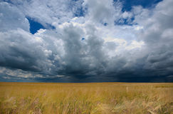Storm dark clouds Royalty Free Stock Image