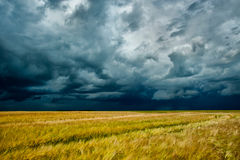 Storm dark clouds Stock Images