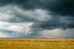 Storm dark clouds over field Stock Photo