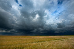 Storm dark clouds over field Royalty Free Stock Photos