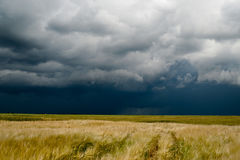 Storm dark clouds over field Royalty Free Stock Photography