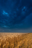Storm and dark clouds over field Royalty Free Stock Photography