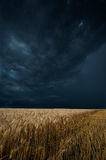 Storm dark clouds Stock Photos