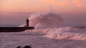 Storm at dawn Royalty Free Stock Photos