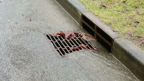 Storm Drain Curb Side. Water from heavy rain flows into a storm drain stock video