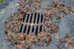 Storm Drain During Rain Storm Royalty Free Stock Images
