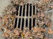 Storm drain during rain storm Stock Photos