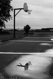 Storm för reflexion för basketbeslag Royaltyfria Foton