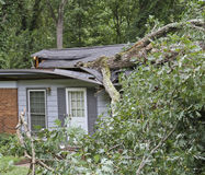 Storm Felled Tree Falls Totaling a Small House Royalty Free Stock Photos
