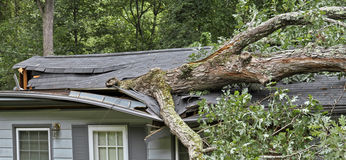 Storm Fells Tree Destroying a House Roof Royalty Free Stock Photos