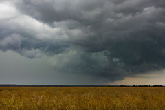 Storm on the field. Storm on the dry field. Dramatic sky. Dark clouds Royalty Free Stock Photography