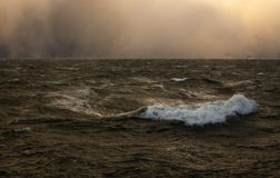 Storm on the fiord near Trondheim royalty free stock image