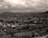 Storm forming Sonora Desert Royalty Free Stock Image