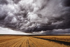 Storm front. A huge thundercloud above fields of Montana, the USA Royalty Free Stock Images