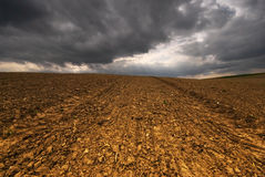 Before the storm, and gold field Stock Image