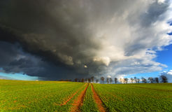 Before the storm, and gold field Royalty Free Stock Photos