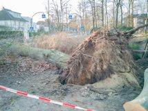 Storm in Hamburg trees overturned with cordon tape Feuerwehr Sperrzone German text for fire department restricted area.  stock image