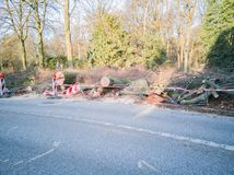 Storm in Hamburg trees overturned with cordon tape Feuerwehr Sperrzone German text for fire department restricted area.  royalty free stock photography