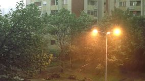 Storm and Heavy Rain 2 - Heavy rain and very strong storm. Trees are moving strongly left and right. Heavy rain and very strong storm. It`s raining heavily and stock footage