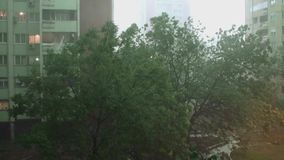 Storm and Heavy Rain 4 - Heavy rain and very strong storm. Trees are moving strongly left and right. Heavy rain and very strong storm. It`s raining heavily and stock video footage