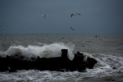 Storm. And high waves-Constanta on the Black Sea Royalty Free Stock Images