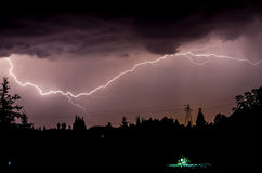 Storm i skog arkivbild
