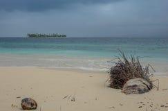 Storm i stranden av paradiset royaltyfri bild