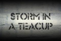 Storm i tekoppen gr royaltyfri foto