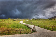 Into the Storm, Independence Pass, Colorado. A storm approaching on top of Independence Pass in Colorado in between Vail and Aspen Royalty Free Stock Photo