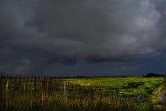 Storm komst Royalty-vrije Stock Afbeeldingen